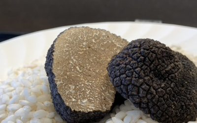 A Few Facts About Truffles